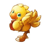 Don't you think Daaishi kinda looks like a chocobo?