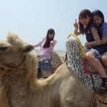 Daaishi's camel picture is here!!!
