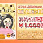 Behold! The luxurious 1000 yen Hello! Project Curry!